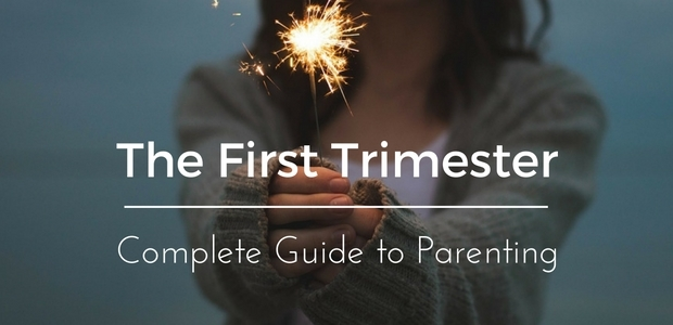 The first trimester of pregnancy