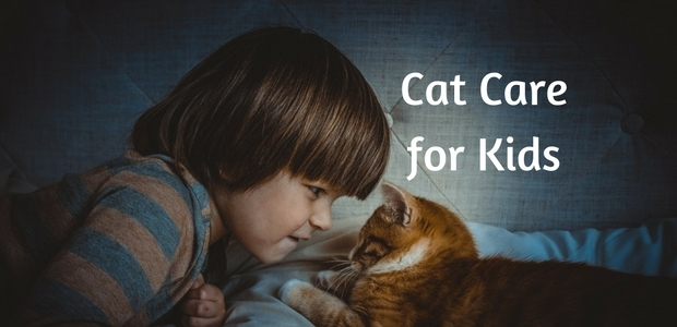 Cat Care for Kids