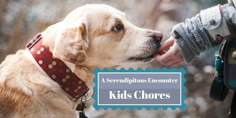 Kids Chores a serendipitous encounter