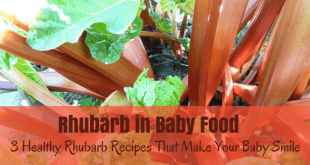 Rhubarb in baby food healthy rhubarb recipes