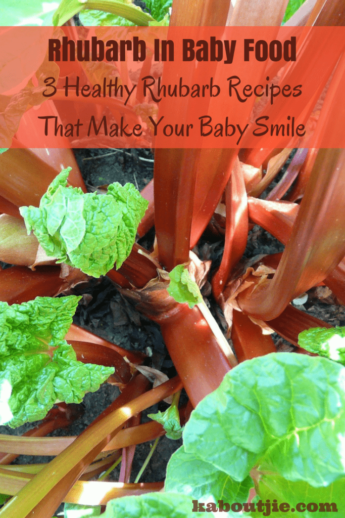 Rhubarb in Baby Food: 3 Healthy Recipes That Make Your Child Smile