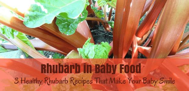 Rhubarb in baby food healthy rhubarb recipes