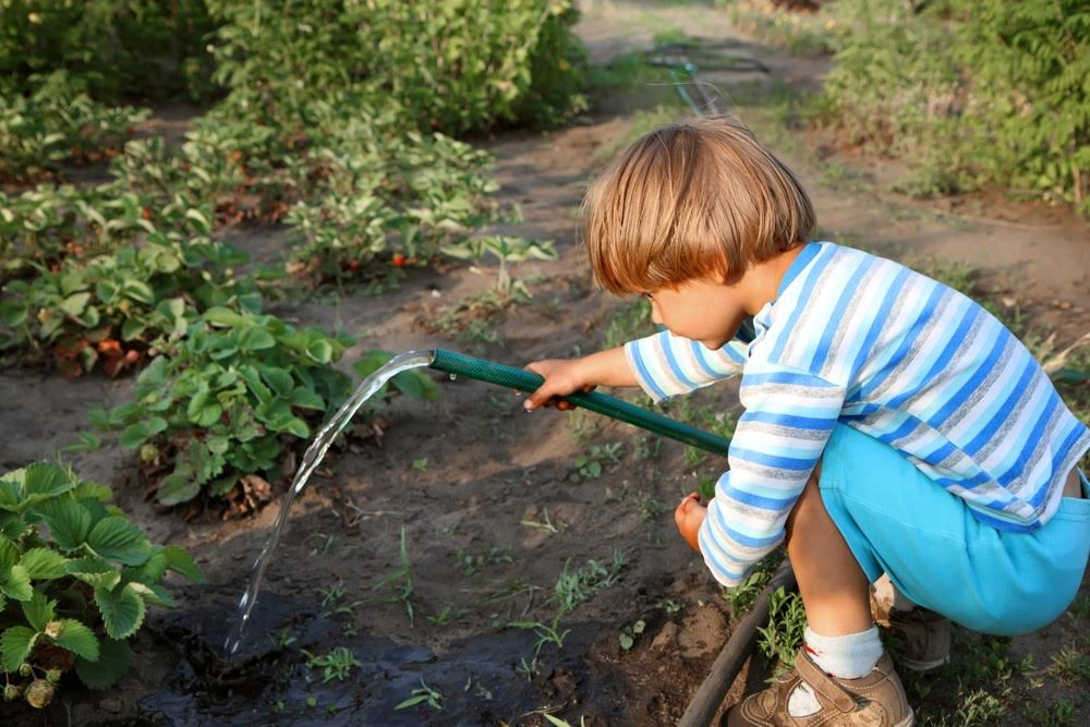 Gardening with kids tips
