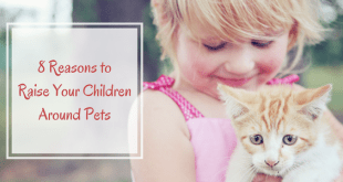 8 Reasons to raise your children around pets