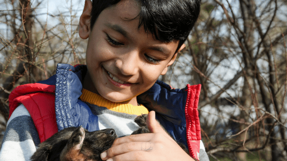 Pets teach children responsibility
