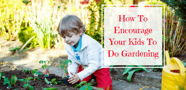 Teach children gardening