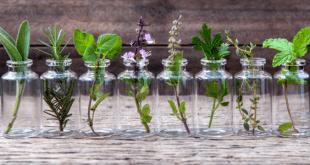 Essential oils anti aging