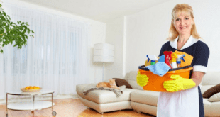 House cleaning professional
