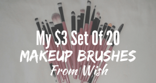 My $3 set of 20 makeup brushes from wish