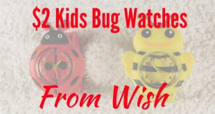 $2 kids bug watches from Wish