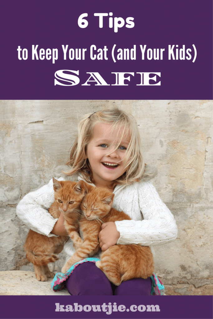 6 Tips to keep your cat and your kids safe