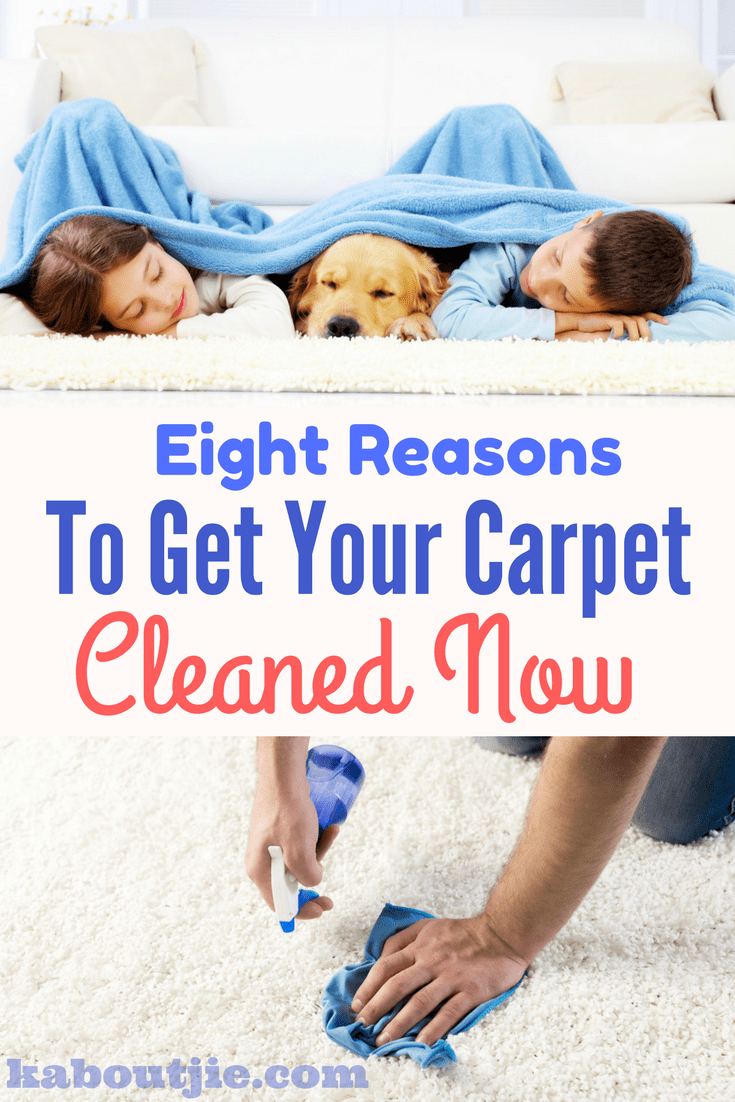 Eight reasons to get your carpet cleaned today