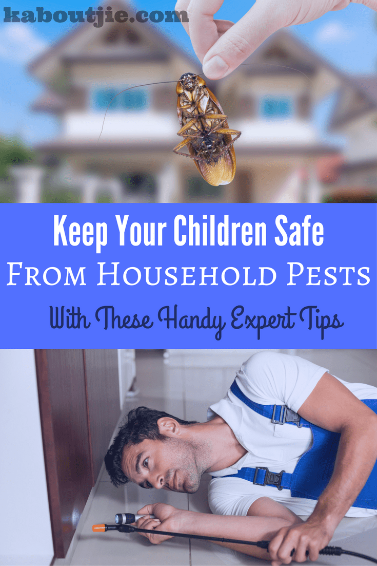 Keep Your Children Safe From Household Pests With These Handy Expert Tips