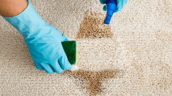 how to clean stains on light carpet