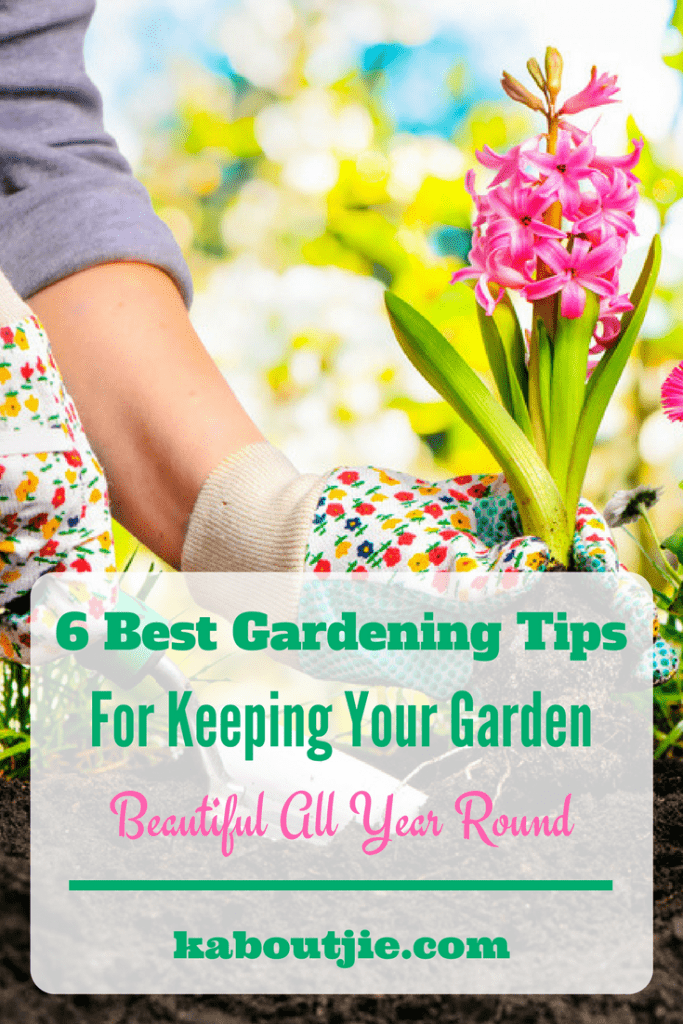 6 Best Gardening Tips For Keeping Your Garden Beautiful All Year Round