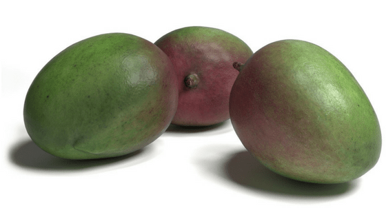 Green unripe mangoes