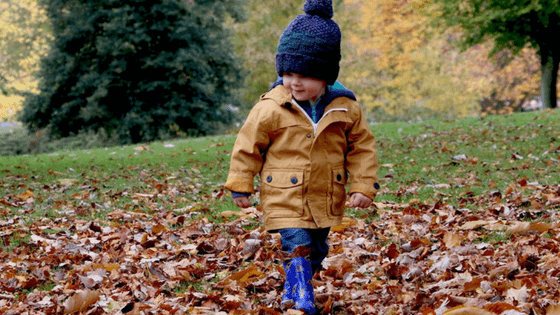 Boy toddler playing in Autumn leaves