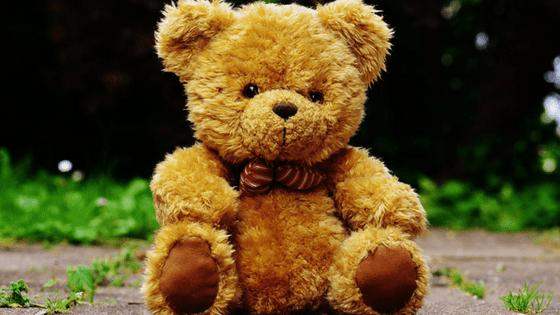 Brown Teddy Bear Outside