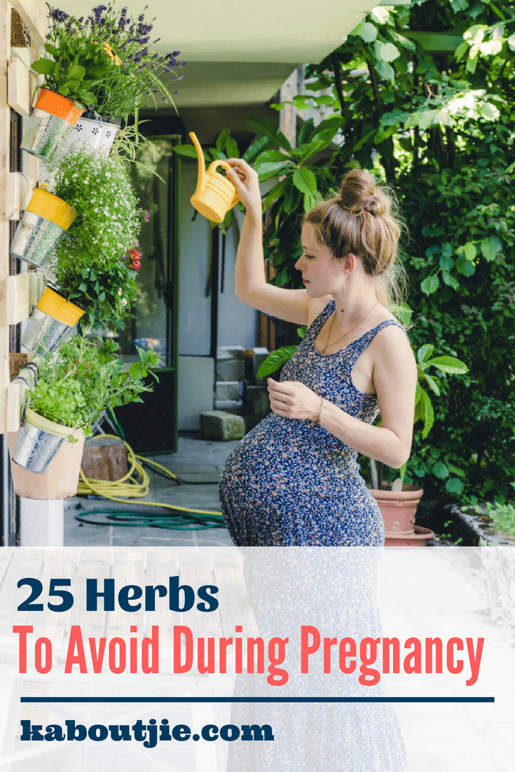 25 Herbs To Avoid During Pregnancy