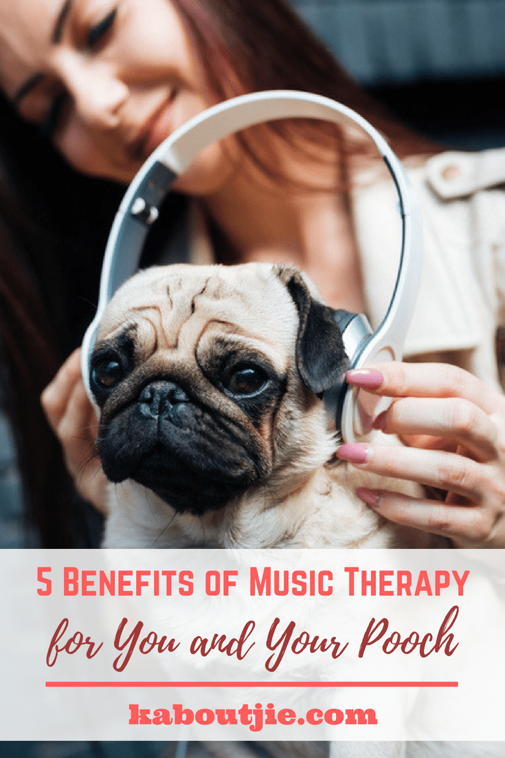 5 Benefits Of Music Therapy For You and Your Pooch