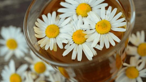 Chamomile tea with chamomile flowers