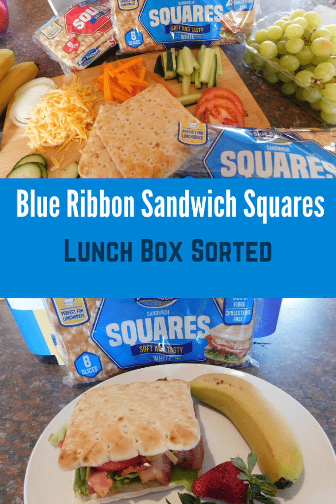 Bluie Ribbon Sandwich Squares - Lunch Box Sorted