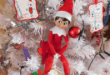 Elf On The Shelf, St Bernard Pet & Letters To Santa Review