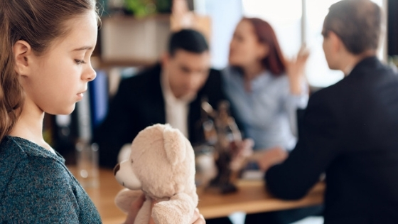 Divorce custody