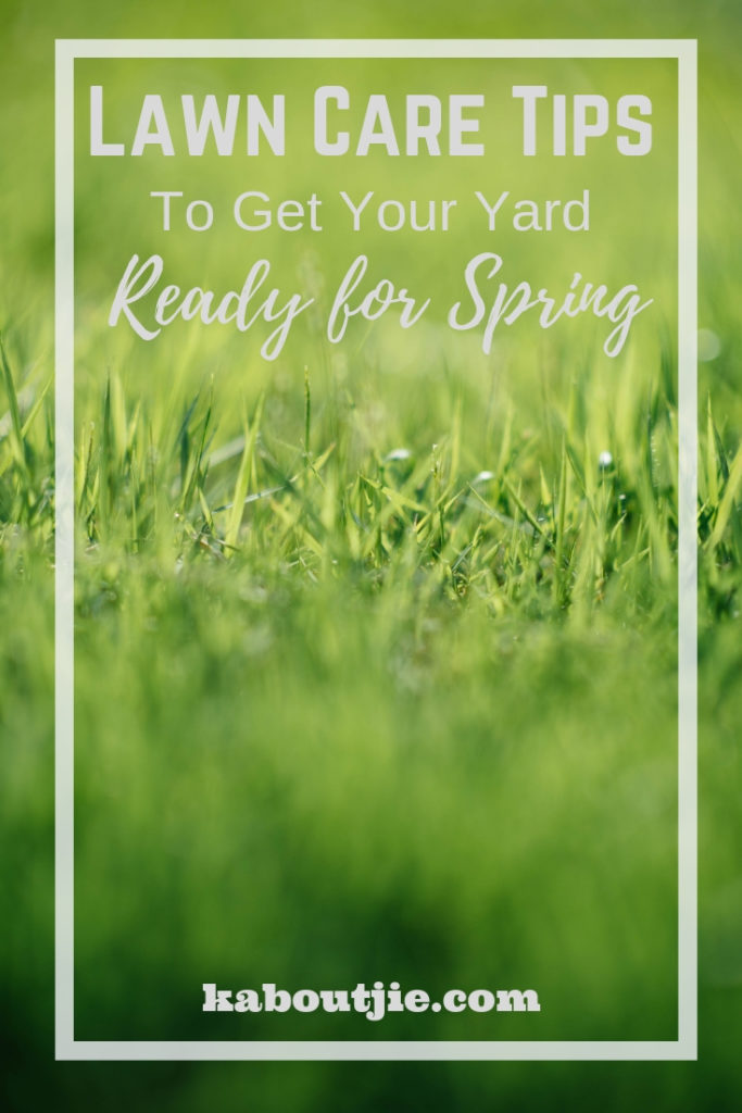 Lawn Care Tips To Get Your Yard Ready For Spring