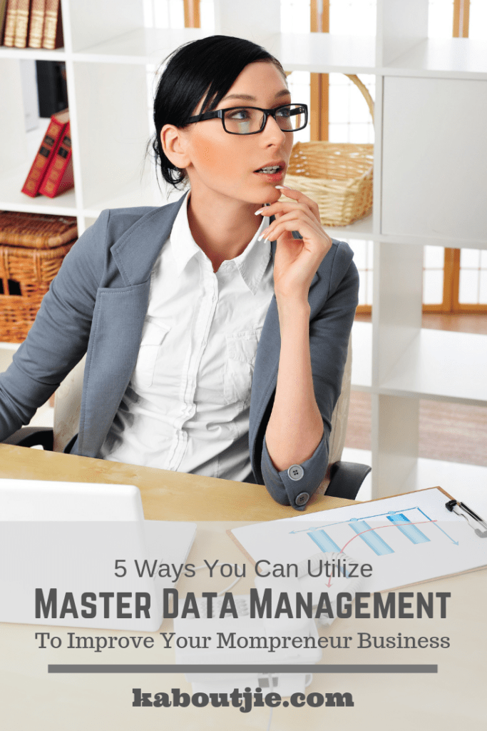 5 Ways You Can Utilize Master Data Management To Improve Your Mompreneur Business