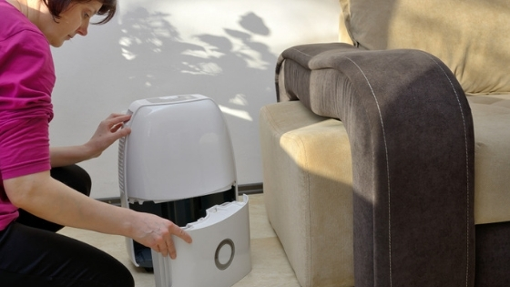 Woman checking dehumidifier