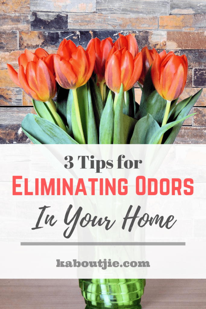3 Tips for Eliminating Odors In Your Home
