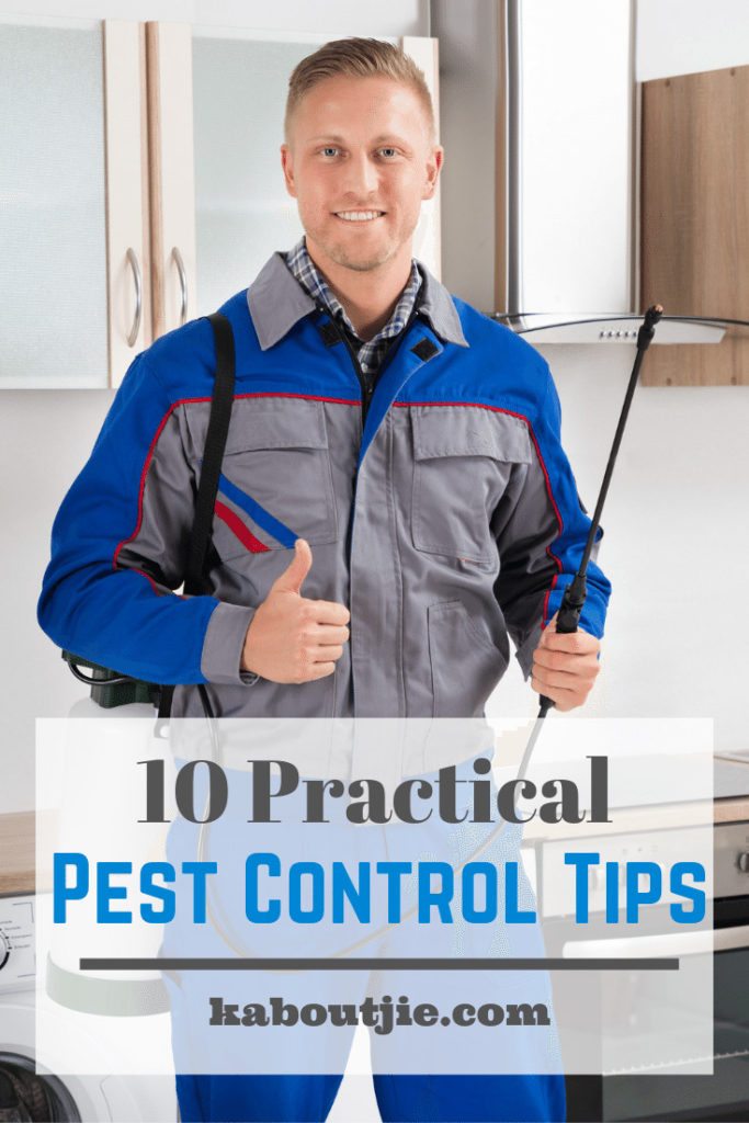 10 Practical Pest Control Tips