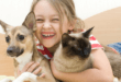 Little girl with cat and dog