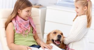 Kids pets home