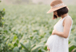 Pregnant woman in field