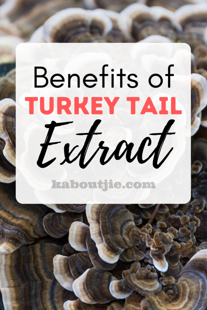 Benefits of Turkey Tail Extract