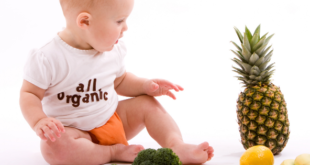 Baby all organic food