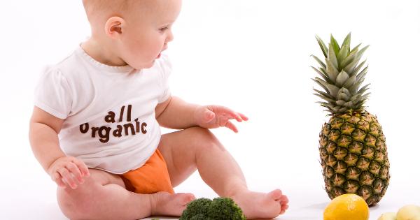 Baby all organic food