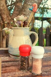 Jug with succulent and toadstools