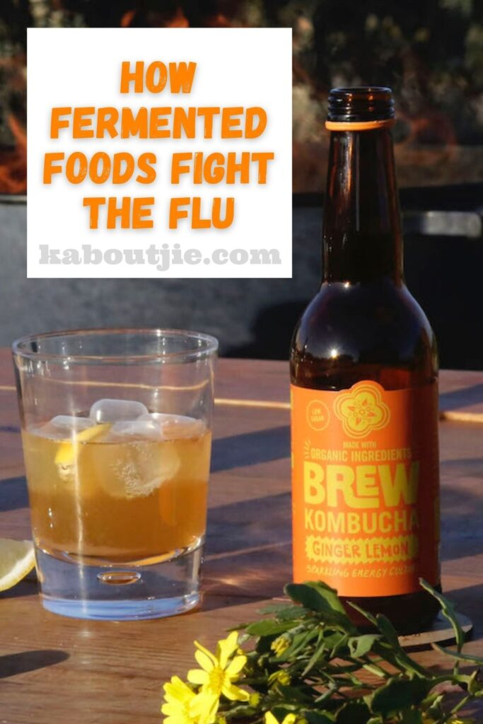 How Fermented Foods Fight The Flu