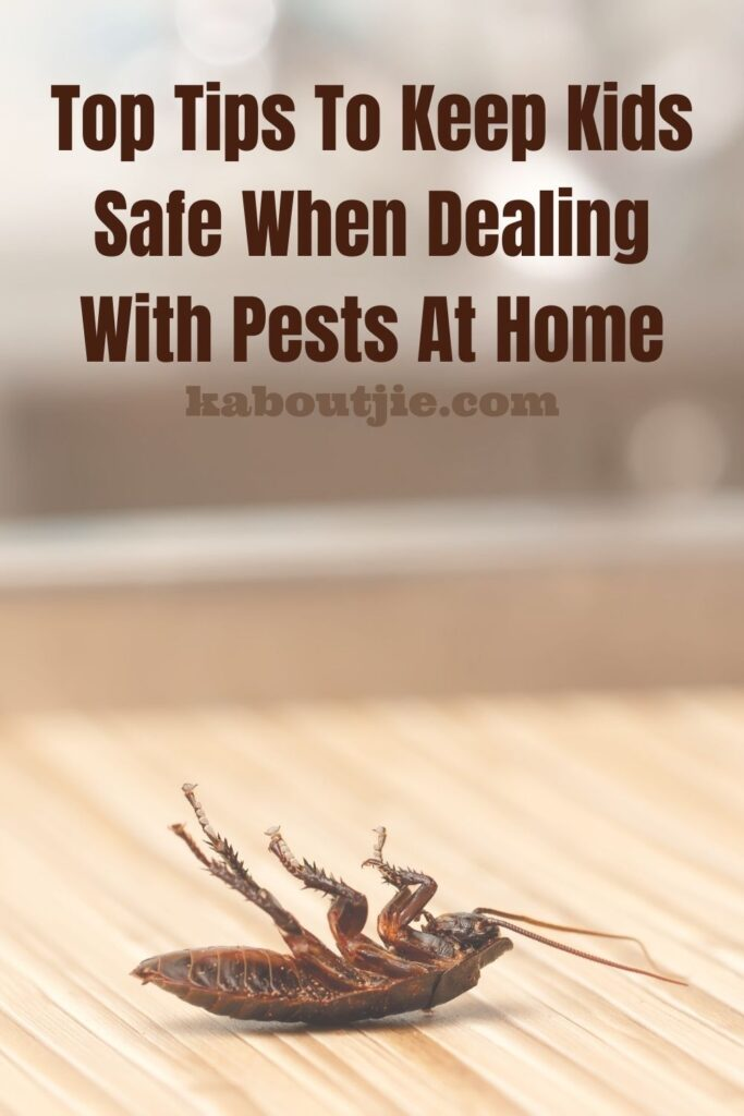 Top Tips To Keep Kids Safe When Dealing With Pests At Home