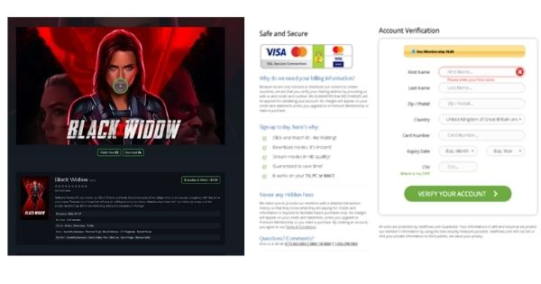 Phishing website Black Widow