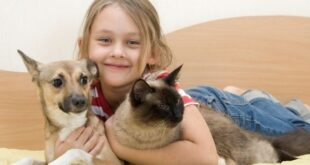 Child and her pets
